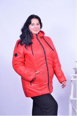 Куртка коротка батал